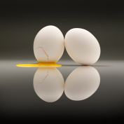 Somerset Fine Art Cracked Egg Photograph by David Wagner, Matte Finish