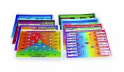 American Educational Metamorphic Rock Chart Transparency Set