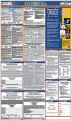Osha4less Georgia All-in-One Labour Law Posters Spanish