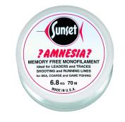 Jenzi Sunset Amnesia / Zero Twist 100 m Transparent