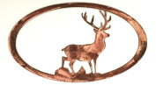 7055 Inc Stag Oval in Metal Wall Art, Polished Copper