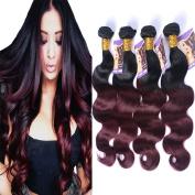 Kapelli Hair (TM) Ombre Hair Extensions Ombre Brazilian Body Wave Virgin Hair 2 Tone T1B/99J Black to Burgundy Human Hair Weave 4 Bundles