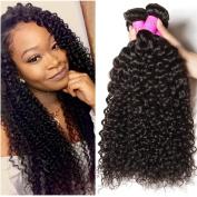 ALI JULIA Wholesale Indian Virgin Jerry Curly Hair Weave 3 Bundles Cheap 100% Unprocessed Remy Human Hair Extensions 95-100g/pc Natural Black Colour