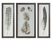 Feather Study Prints, S/3