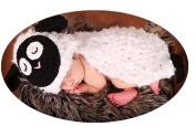 Baby Box Newborn Photography Props Wraps,Sheep