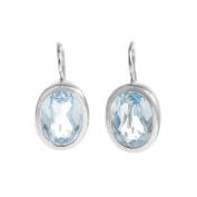 Crystal Babyblue Oval Earrings FE30