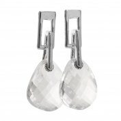 Crystal Drops Ladies Earrings FE43