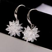FLOW ZIG Korean Fashion Sweet Temperament Crystal EarRings