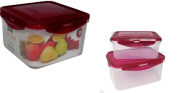 VMI Housewares 4-Piece Deep Square Easy Lock Food Storage, 2480ml and 1010ml, Red