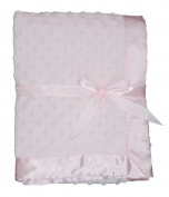 LUXEHOME Super Soft Microfiber Plush Baby Blanket