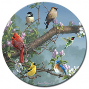 CounterArt Beautiful Songbirds Lazy Susan Glass Serving Plate