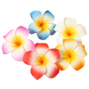 10 Pcs Multicolor Plumeria Hair Clips 5cm Women Girls Hawaii Hawaiian Wedding Party Beach Flower Hairclip Headpieces