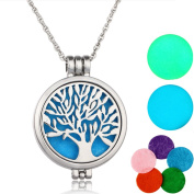 HOUSWEETY Aromatherapy Essential Oil Diffuser Necklace - Locket Pendant,5 Colourful Pads+2 Noctilucent Pads