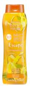 Belcam Bath Therapy Escape 3-in-1 Body Wash, Bubble Bath and Shampoo, Madagascar Ylang Flower, 16.9 Fluid Ounce