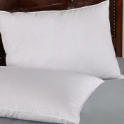 Set of 2, Firm White Goose Down and Feather Pillows, 100% Cotton Cover, Standard/Queen Size