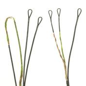 First String FSP 24st Apprentice Bear String Kits, Green/Bronze