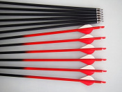 GPP Outdoors Carbon 80cm Arrows with Field Points Replaceable Tips (12 Pack) for Recuve Bow & Compound Bow