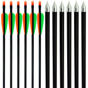 Wolf Soldier 12Pcs Fibreglass Arrow 70cm Inch Archery Hunting Archery Target Arrows Steel Point 14-36kg For Recuve & Compound Bow Recurve Bow Practise Arrows