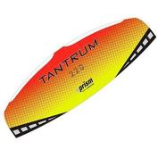 Prism Tantrum Dual-line Parafoil Kite with Control Bar
