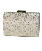 Anna Cecere Women's Clutch gold gold