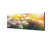 Wall Picture 120 x 40 cm Canvas Panorama in Flowers Light Spring Abstract