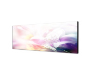 Canvas Wall Art 40 cm Flowers Close Up As A Panorama in Colour Filter Light