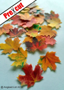 MAPLE LEAVES AUTUMN FALL EDIBLE RICE / WAFER PAPER CUP CAKE TOPPERS WEDDING PARTY BIRTHDAY DECORATION by Anglesit Other