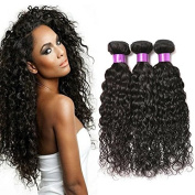 Fashion Queen Hair Brazilian Water Wave 3 Bundles Wet And Wavy Human Hair Brazilian Shelly Curly Human Hair Extensions