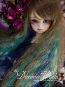 (9-10inch)22-24cm BJD Doll Wig / for 1/3 SD DD BJD Doll / Peacock Colour Long Curl Hair