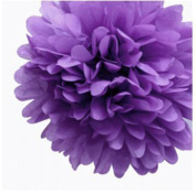 """S-shine 16"""" Poms Large Fluffy Pom Pom Hanging Decorations Tissue Paper Pom Flowers For Celebrate Decoration Fluffy Hanging Lantern Party/Wedding Blooms Ball"""