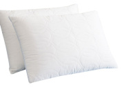 BioPEDIC Super Support Gel Core Pillow Pair, King, White