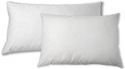 Sunflower DBP-22x28 Cotton Down Blended Hybrid Pillow, Set of 2, Standard