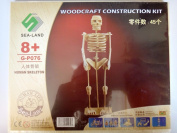 3D Stereo Human Skeleton Wooden Puzzles Intellectual Assembling Jigsaw Wood Toy