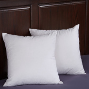 Puredown White 95% Goose Feather and 5% Goose Down Pillow Insert 46cm x 46cm , Set of 2