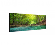 Wall Picture 120 x 40 cm Canvas Panorama in Forest Wild Stream Spring Sunlight