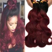Black Rose Hair Two Tone Ombre Hair Extensions Weaves 7A Peruvian Virgin Hair Body Wave Human Hair 4 Bundles 1B/99J Black+Burgundy 100g*4pcs