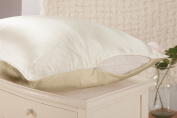 THXSILK 19 momme Silk Pillowcase for Hair and Skin Twin Size 20x27, Champagne + Ivory White