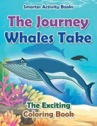 The Journey Whales Take