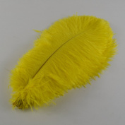 Sowder 10pcs Ostrich Feathers 14-16inch(35-40cm) for Home Wedding Decoration