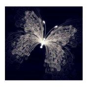 Blxecky 5D DIY Diamond Painting By Number Kits,butterfly