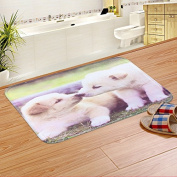 Door mats living room kitchen cushions bedroom Watergate mat bathroom mat in the Foyer -4060cm Two small dogs