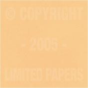 Springhill Vellum Bristol Tan 67# Cover 22cm x 28cm 250 sheets
