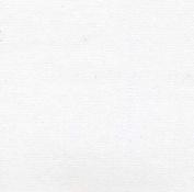 Aa Primed Cotton Canvas 300ml 160cm X 6Yd Rl