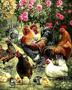 Framless New Arrival Unique Gift Digital Oil Painting On Canvas Painting By Numbers Decorative Picture Garden Play Hi Chickens