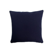 Pillow Navy With Green Eco Friendly Insert 16 x 16
