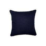Pillow Navy With Green Eco Friendly Insert 12 x 12