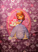 Sofia The First Princess In Training (COMFORTER ONLY) Size TODDLER Girls Kids