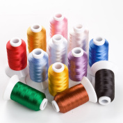 Sinbel Polyester Embroidery Thread 12 Colours 550 Yards Per Spool For Brother Babylock Janome Singer Pfaff Husqvaran Bernina Machines