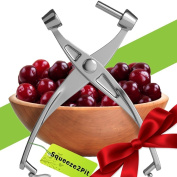 Cherry Pitter Olive and Cherry Pitting Tool