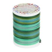 YLI 32550-075 Hand Dyed Organic Cotton Braid Thread, 50 yd, Green